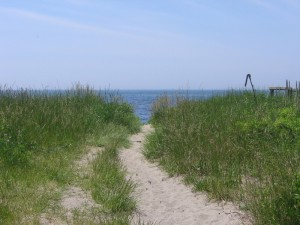 Dunes at Narragansett Beach